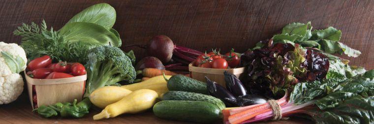 vegetables_bn
