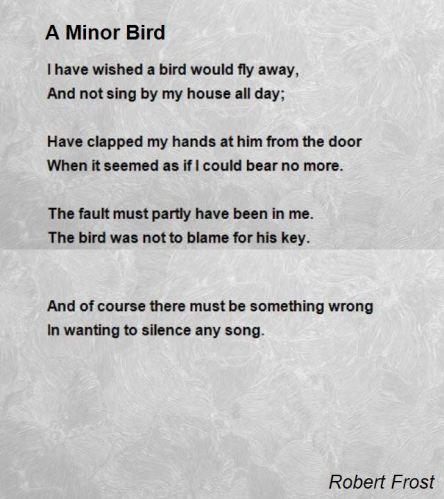 a-minor-bird