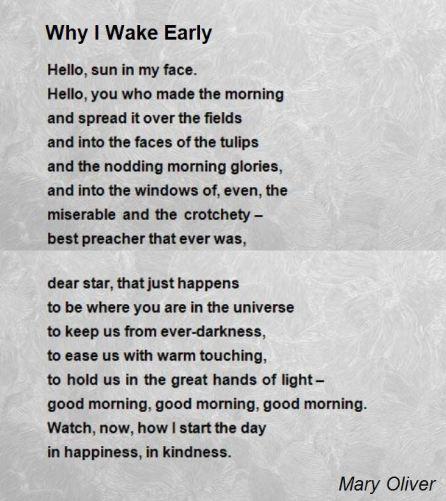 why-i-wake-early